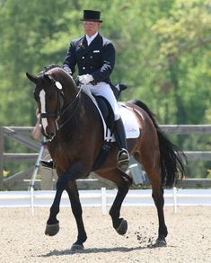 dressage horse pictures | ... year old champion in 2007 & USDF FEI 6 year old Horse of the Year