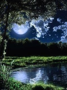 Pond At Night Moon Photos, Moon Pictures, Pretty Pictures, Beautiful Moon, Beautiful World, Beautiful Places, Shoot The Moon, Moon Magic, Nocturne