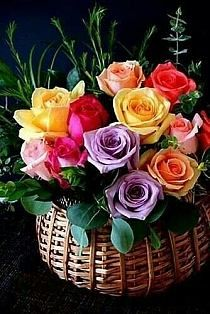 Cute Good Morning Pictures, Love Good Morning Quotes, Good Morning Dear Friend, Good Morning Beautiful Flowers, Good Morning Happy Sunday, Good Morning Beautiful Images, Good Morning Wishes, Beautiful Roses, Birthday Wishes Flowers
