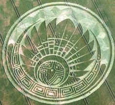 CROP CIRCLE.........SOURCE BING IMAGES...........