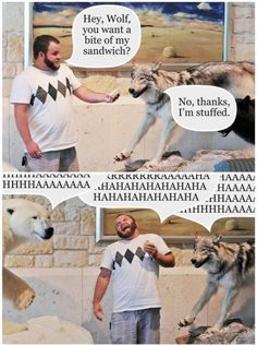 You want a bite of my sandwich? via /r/funny...