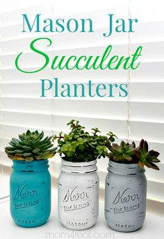 Painted Mason Jar Succulent Planters from Mom 4 Real