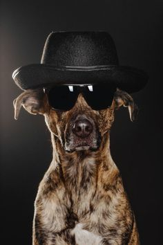 Heisenberg by Elke Vogelsang : ) I miss Breaking Bad