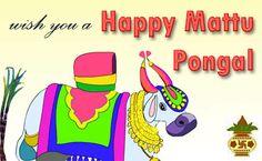 Happy Mattu Pongal!
