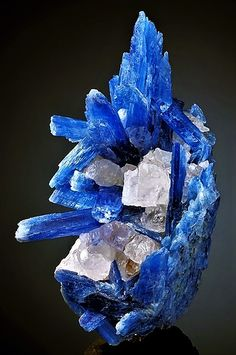 Aesthetic cluster of translucent to gemmy blue Kyanite crystals with Quartz! F… Aesthetic cluster of translucent to gemmy blue Kyanite crystals with Quartz! From Barra de Salinas, Coronel Murta, Jequitinhonha Valley, Minas Gerais, Minerals And Gemstones, Rocks And Minerals, Natural Gemstones, Cool Rocks, Beautiful Rocks, Beautiful Pictures, Rock Decor, Mineral Stone, Rocks And Gems