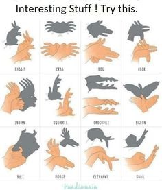 Hand puppets. Just picture no page. Bottom row  is bull.moose.elephant.snail.