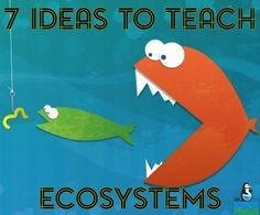 7 Ideas to Teach Ecosystems from The Science Penguin - Here are 7 of my favorite science teaching ideas for ecosystems, food chains, and food webs! Science Resources, Science Lessons, Science Education, Science Activities, Ecosystem Activities, Ecosystems Projects, Forensic Science, Science Ideas, Physical Science