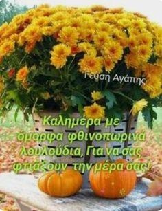 Good Night, Good Morning, Tattos, Autumn, Nighty Night, Buen Dia, Bonjour, Fall Season, Fall