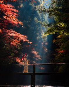 Oguni Shrine / Fantastic glory that appears in the early morning - Alaya Home Park Landscape, Fantasy Landscape, Landscape Photos, Scenic Photography, Landscape Photography, Nature Photography, Beautiful World, Beautiful Places, Beautiful Pictures