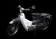 Honda Cub, Cubs, Motorcycle, Vehicles, Bear Cubs, Motorcycles, Car, Tiger Cubs, Motorbikes