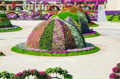 Dubai Miracle Garden is world's biggest flower garden. This amazing tourist attraction is a Guinness Record Holder for the Largest Vertical Garden. Most Beautiful Gardens, Beautiful Flowers Garden, Large Flowers, Pretty Flowers, Garden Soil, Garden Art, Garden Design, Dubai Garden, Dig Gardens