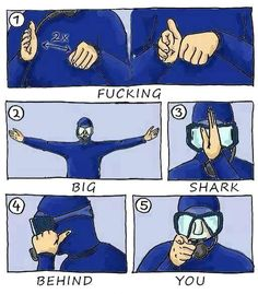 signs they forgot to teach you in diving school