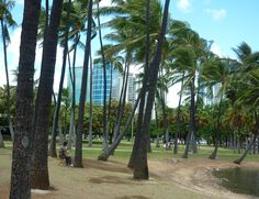 Beautiful afternoon in Ala Moana Beach Park Honlulu #LetsGoHoloHolo http://letsgoholoholo.com/hawaii-happiest-place-on-earth/
