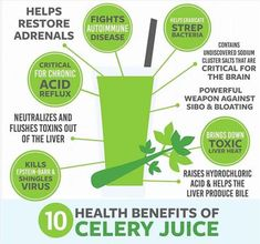 Drinking celery juice is one of the hottest health trends for health and healing .Drinking celery juice is one of the hottest health trends for health and healing. This post contains a recipe for making Health Blog, Health Tips, Health Articles, Health Fitness, Celery Juice Benefits, Benefits Of Vegetables, Benefits Of Juicing, Juicing For Health, Smoothies