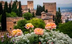 Granada, Spain = Been Places Around The World, Travel Around The World, Around The Worlds, Sierra Nevada, Portsmouth, Malaga, Brighton, Places To Travel, Places To See