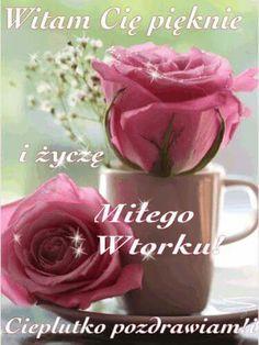 Good Morning, Rose, Flowers, Plants, Pictures, Blog, Humor, Polish, Bom Dia
