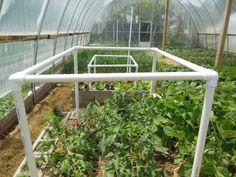Build A Tomato Trellis - The Living Farm