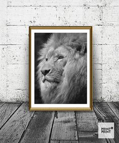 Lion Print, African Lion Poster, Lion King Print, Wild Cat Photo, Beatiful Lion Print, Look Of The Lion, Black And White Lion Art