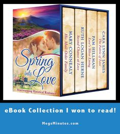 Picture of the eBook cover I won for the fiction ebook collection Spring into…