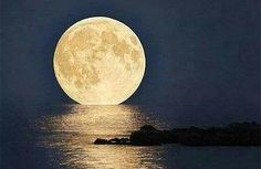 Super Moon in Key West Florida I really need to be able to experience this. If I get to go to south FL, I'm going in time for the full moon! Beautiful Moon, Beautiful World, Simply Beautiful, Cool Photos, Beautiful Pictures, Key West Florida, Florida Keys, Sup Yoga, Sun Moon