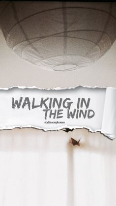 Walking In The Wind | @stylinsonphones