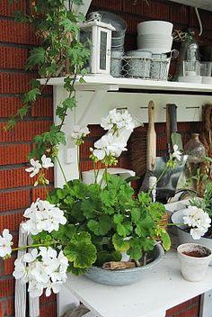 oppottafel - potting bench