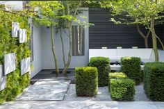 Simple elegance. Court Yard Garden. Matt Keightley MSGD - Vineyard Mews - Photo Marianne Majerus