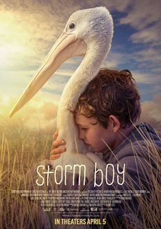 Inspired by Savannah: Storm Boy is a Beautiful, Contemporary Retelling of Colin Thielle's Beloved Novella of the Same Name, Hitting Theaters, Tomorrow, April 5th #StormBoy (Review)