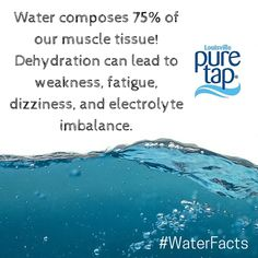Water Facts, Muscle Tissue, Pure Products, Aqua
