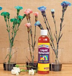 Liquid Watercolor™ Flowers Discount School Supply, Free Activities, Spring Crafts, School Supplies, Spring Time, Teaching Resources, Classroom, Flowers, School Stuff