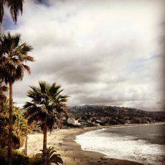 Laguna Beach, Ca #palms #beach #waves #socal #lagunabeach #iphone