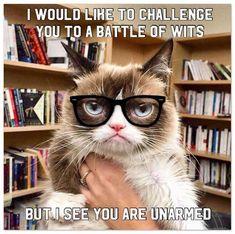 Grumpy Cat Quotes, Funny Grumpy Cat Memes, Funny Cats, Funny Memes, Grumpy Kitty, Jokes, Cat Puns, Pet Memes, Funny Animal Quotes