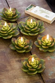 Hens and Chicks candles!! So adorbale! Would look so cute in my doughbowl centerpiece.