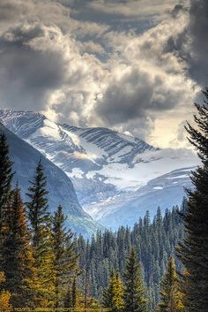 Jackson Glacier, Glacier National Park, Montana - seen this in person! Oh The Places You'll Go, Cool Places To Visit, Places To Travel, Travel Destinations, Beautiful World, Beautiful Places, Amazing Places, Paris Match, Big Sky Country