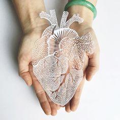 L'artiste Ali Harrison, basée à Toronto, est connue mondialement pour ses oeuvres en papier découpées, d'une finesse incroyable. Ses créations nécessitent en moyenne 60 heures de travail de découpe minutieuse, à la main pour arriver à ce rendu final. Pour cette collection d'organes, l'artiste s'inspire des cellules qui composent notre corps. Une fois réalisés, ces modèles sont parfois reproduits sur du bois grâce à la découpe laser.