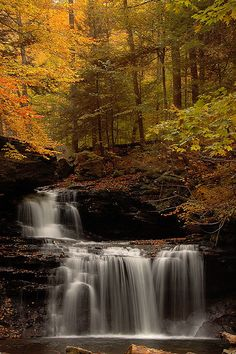R.B. Ricketts Falls on Kitchen Creek in Ricketts Glen State Park, Fairmount Township, Luzerne County, Pennsylvania