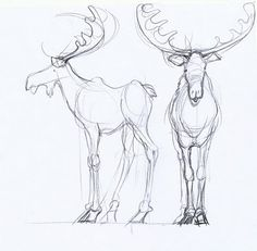 4th Day of Christmas drawing Moose | word from Werner