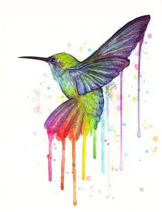 Hey, I found this really awesome Etsy listing at http://www.etsy.com/listing/179782881/hummingbird-art-print-rainbow-watercolor