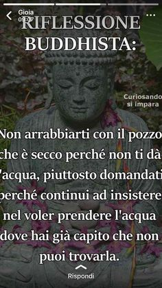 Non arrabbiarti con il pozzo Italian Phrases, Italian Quotes, Motivational Messages, Inspirational Quotes, Buddha Life, Quotes About Everything, Life Philosophy, More Than Words, Osho