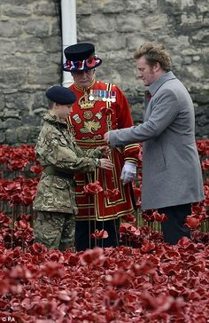 A poppy for each of the fallen: Thousands flock to Tower of London to see last of ceramic flowers planted as they pay their respects to Britain's war dead Poppy Decor, Remembrance Day Poppy, Sea Of Poppies, London Now, Indoor Flowering Plants, Lest We Forget, British Men, Famous Landmarks, Tower Of London