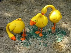 hilarious gourds - Google Search