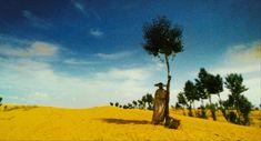 Ashes Of Time Redux Dir: Wong Kar Wai  DoP: Christopher Doyle & Pung-Leung Kwan Year: 1994