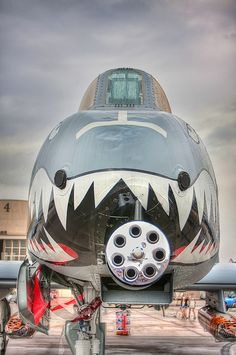 A-10 Thunderbolt by Photomatt28, via Flickr-- this would be the plane I would fly if I were a pilot. Badass