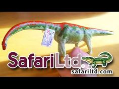 Safari Ltd® #Brachiosaurus #Dinosaur review