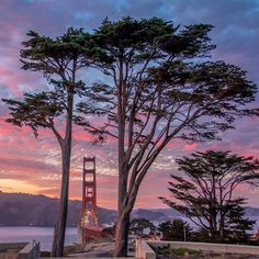 Battery Godfrey is the best place to watch an incredible sunset at Golden Gate Bridge by San Francisco Feelings