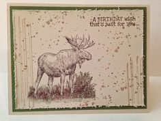 Stylin' Stampin' INKspiration: Quick & Easy Cards (by Pam Steckman, masculine birthday)