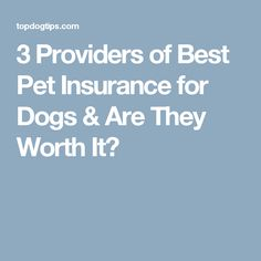 3 Providers of Best Pet Insurance for Dogs & Are They Worth It?