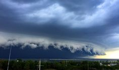 SHELF CLOUD: Cleveland, Ohio August 11, 2016. Trees down, electric out.