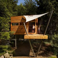 Fancy - Tree House