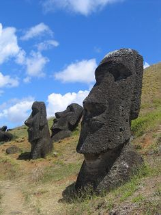 Moai at Rano Raraku on Easter Island, pre-European. The 887 mysterious monumental heads of ancestors made by the Rapa Nui people are dotted throughout the island but all appear to have been carved at the quarry of Rano Raraku where half of them still reside including these examples. Civil strife on the island is thought to be the reason these were not transported elsewhere.